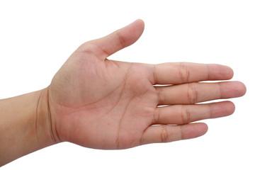 Hand posture