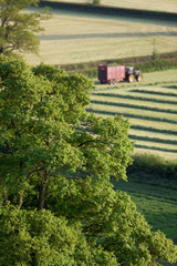 Tractor and trailer in sunny field