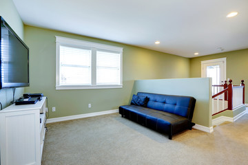 Living room in soft mint tone with couch and tv