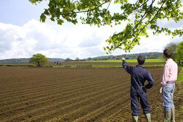 Farmers viewing ploughed fields with tractor in distance