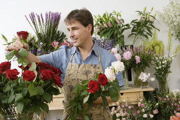 Male florist working in flower shop, checking red rose, smiling