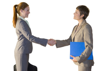 Businesswoman shaking hands together