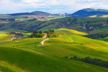 Typical summer rural landscape , Tuscany, Italy