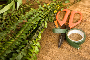 Scissors and ribbon beside plant in flower shop, close-up (still life)