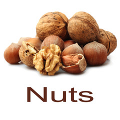 Close up of fresh nuts on white background