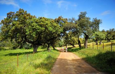 Dos mujeres caminando en la Sierra de Aracena, Huelva, España