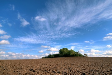 Ploughed field with grave hill