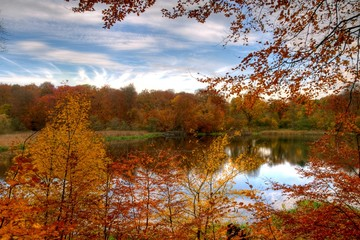 Lake framed with fall