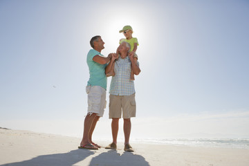 Multi-generation men on sunny beach