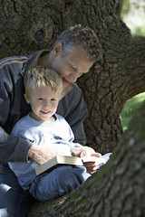 Father and son (3-5) sitting in tree, reading book, smiling
