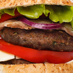 Big home made burger