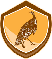 Turkey Walking Shield Retro