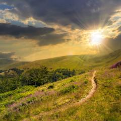 summer walks to highland at sunset
