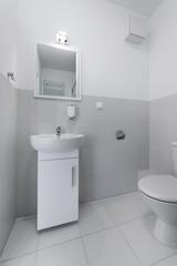 Compact interior bathroom design