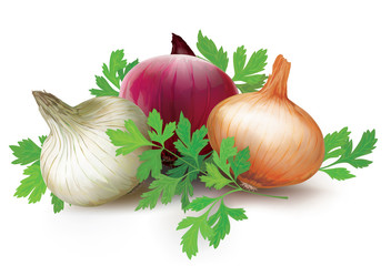 Onions of different colors and parsley
