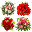 four colorful flowers bouquet. roses, amaryllis, protea isolated
