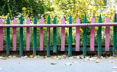 Colorful fence with beautiful plant background