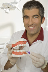 Portrait of a male dentist holding dentures and smiling