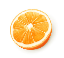 Orange fruit, vector