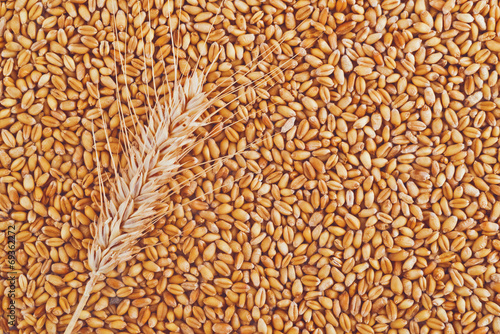 Aluminium Granen Wheat grains and ears as agricultural background