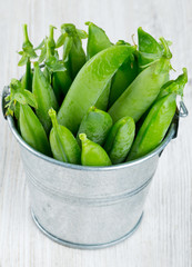 fresh pea pods in metallic bucket