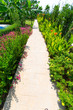canvas print picture - Tropic Garden