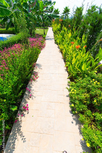 canvas print picture Tropic Garden