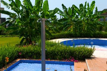 Tropic Garden