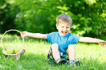 Little boy on grass with basket of apples
