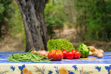 Vegetables in French garden