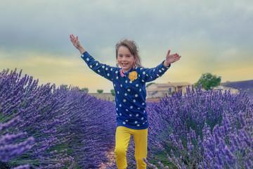 Lavender farmland
