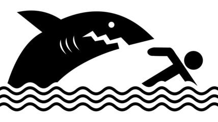 danger requins