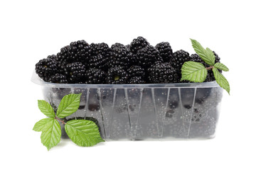 Blackberries with green leaves isolated on white