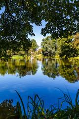 Calm Blue Lake in Garden