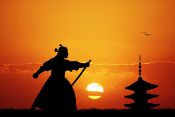 Samurai ninja at sunset