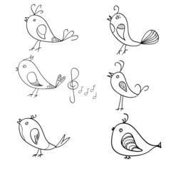 Singin birds doodle