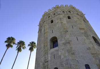 perspectiva torre el oro