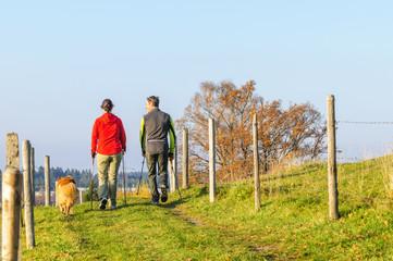 Nordic Walking im Herbst