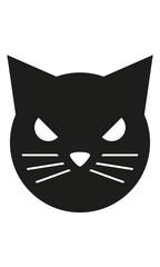 Katze Kopf Frontal Böse
