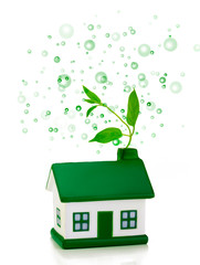 green house with bubbles