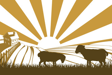 Silhouette sheep or lambs on farm