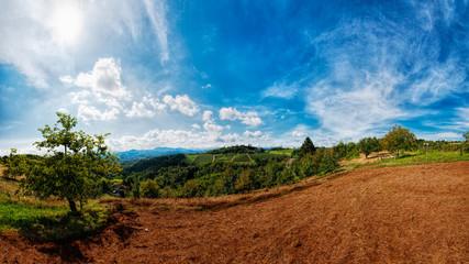Le colline di Ovada - Panorama