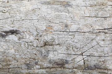 Holzstruktur grau