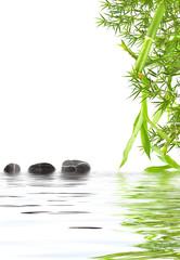 bambou aquatique zen détente relaxation