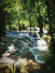 cascada natural en el bosque