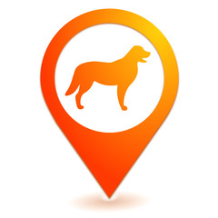 chien sur symbole localisation orange