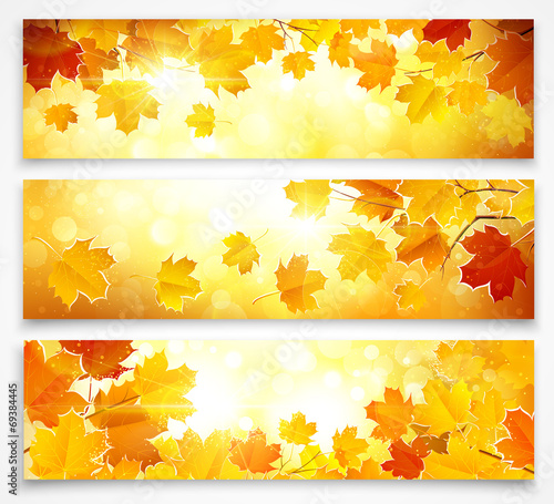 Collection of autumn banners poster