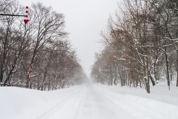 Blizzard in Shiretoko (知床の吹雪) Hokkaido, Japan