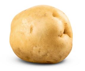 potato isolated