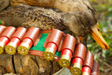 Hunting ammunition and duck poster